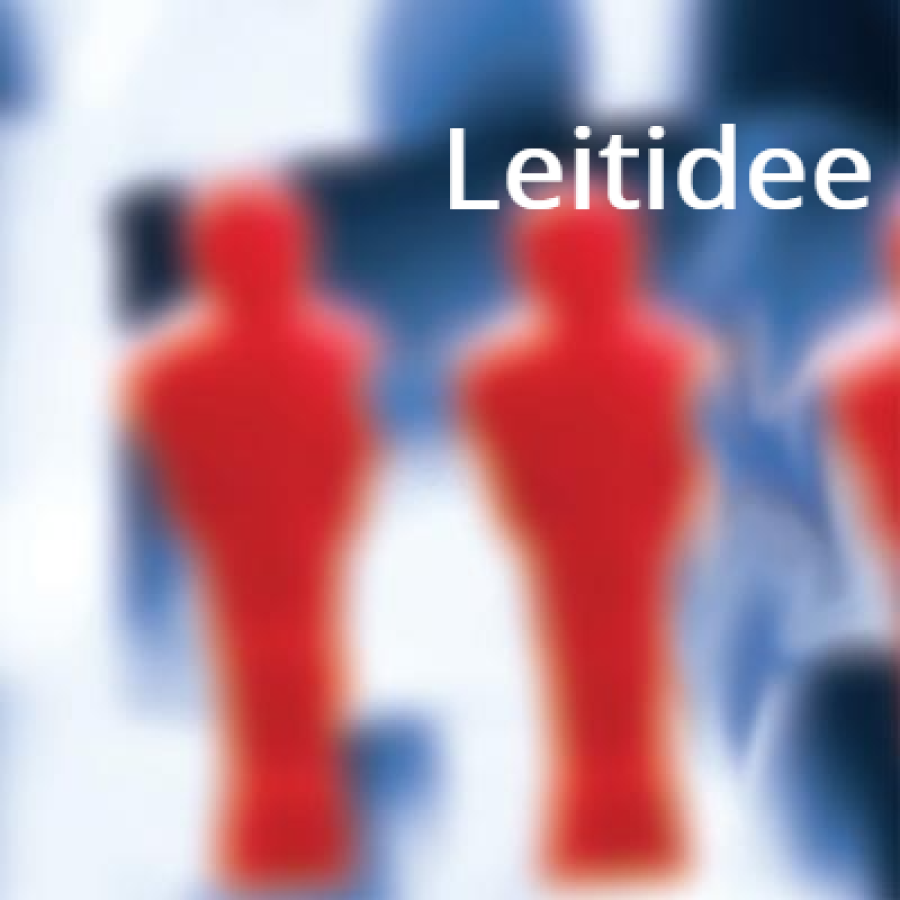 Leitidee FIT